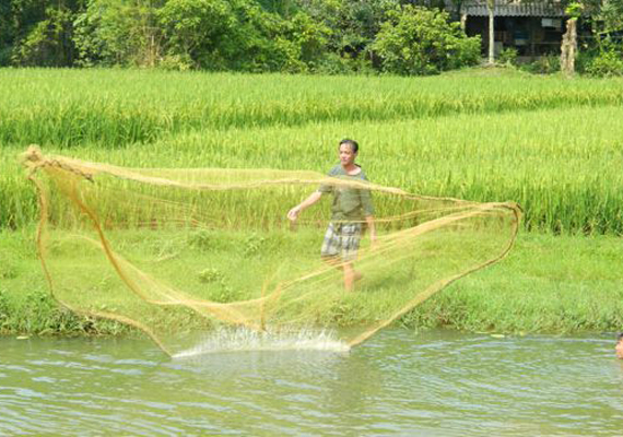 throw-cast-net-in-mai-chau