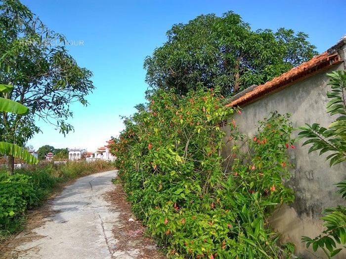 Alley way Quan Lan island