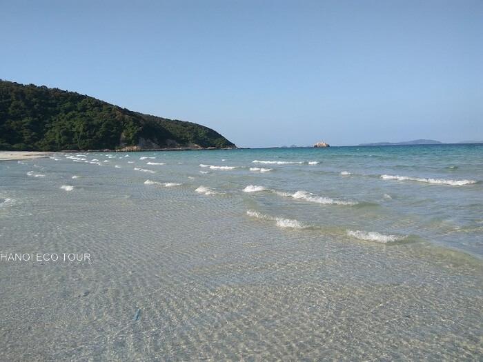 Coto island tour