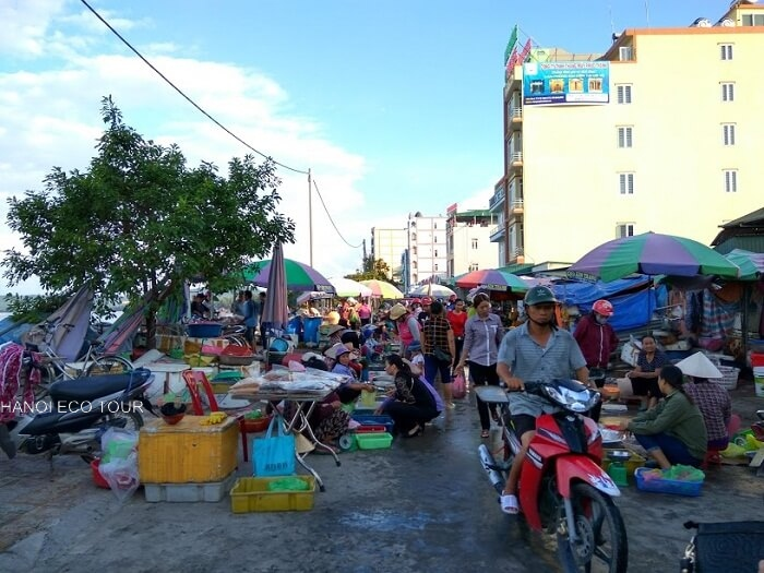 morning market coto island