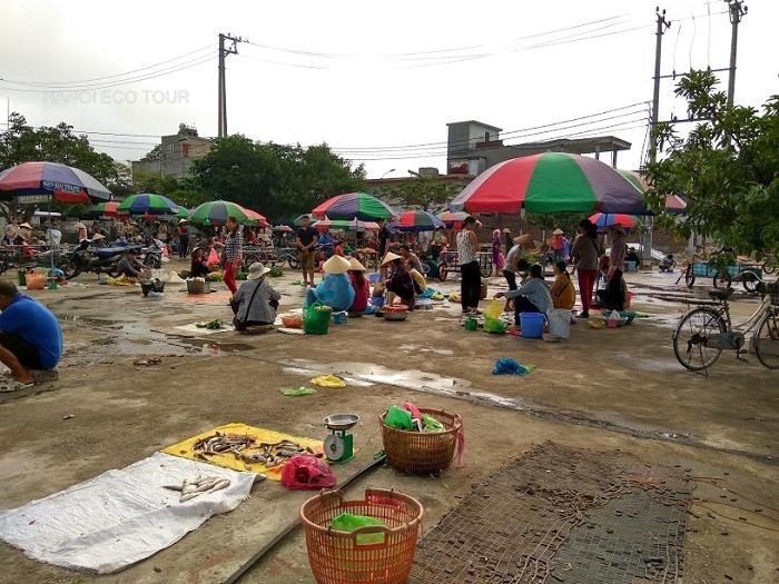 Quan Lan fish market
