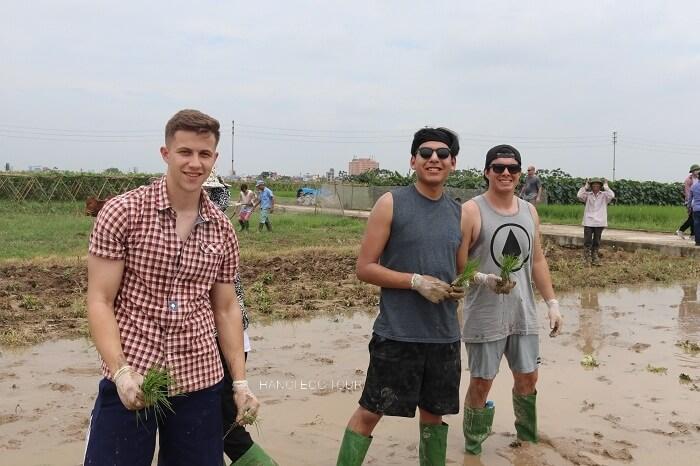 Hanoi Rice farming tour