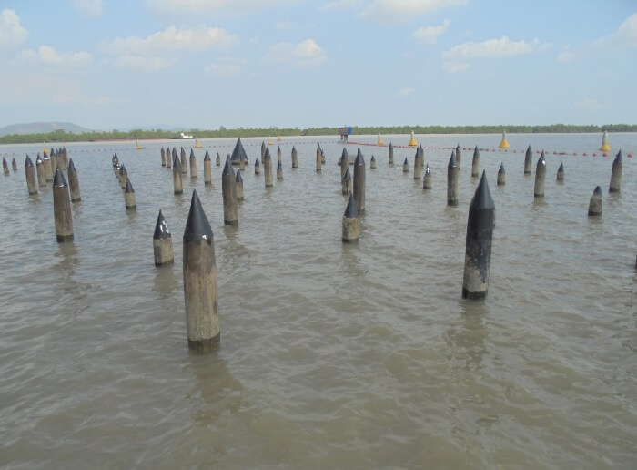 Bach Dang river, Quang Ninh