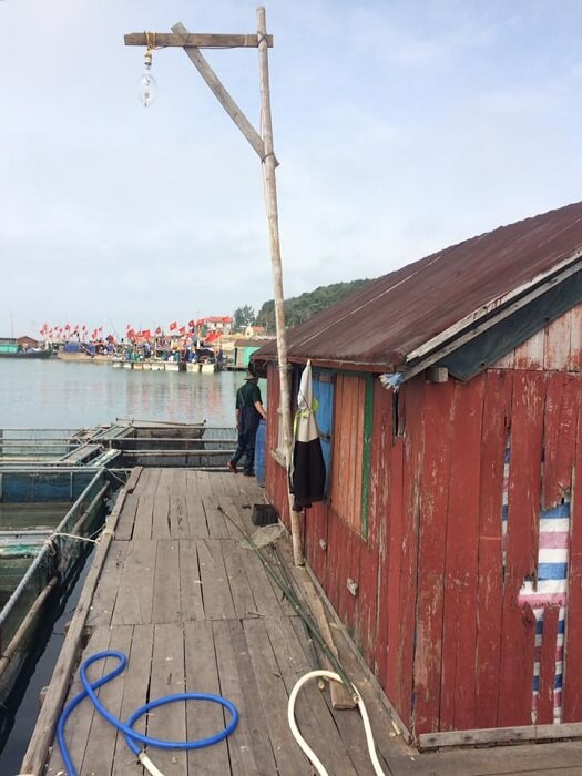A Unique boat house on Thanh Lan island