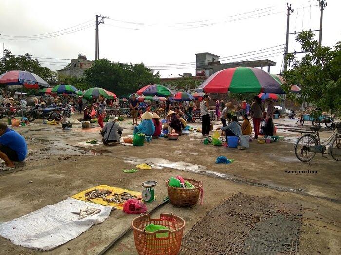 morning fish market quan lan