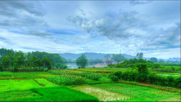 vietnam-rural-life
